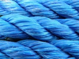 De Blauwe Draad